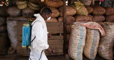 Epidémie de peste à Madagascar: 94 morts, plus de 1.100 cas
