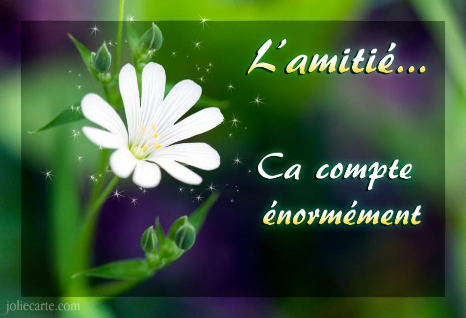 amitie et rencontres