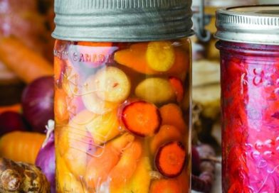 La fermentation, le charme secret de la gastronomie